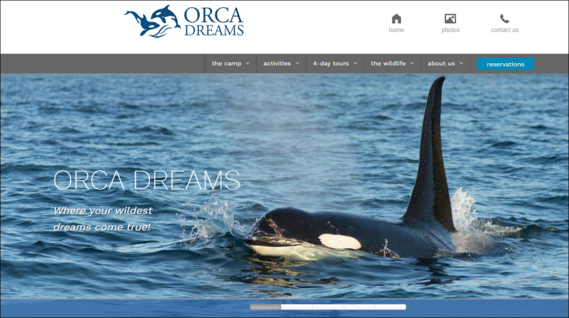 Ocra Dreams Home Page
